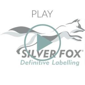 Silver_Fox_Video