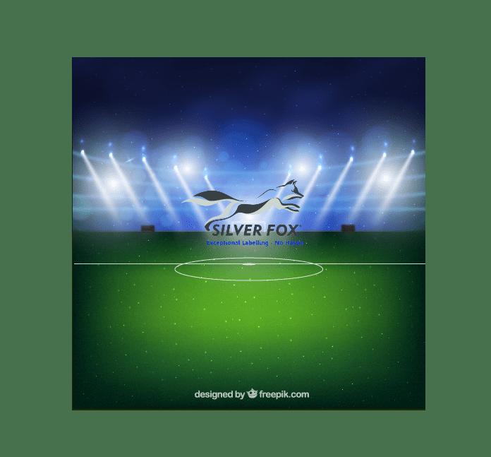 Silver Fox Fantasy Football Stadium