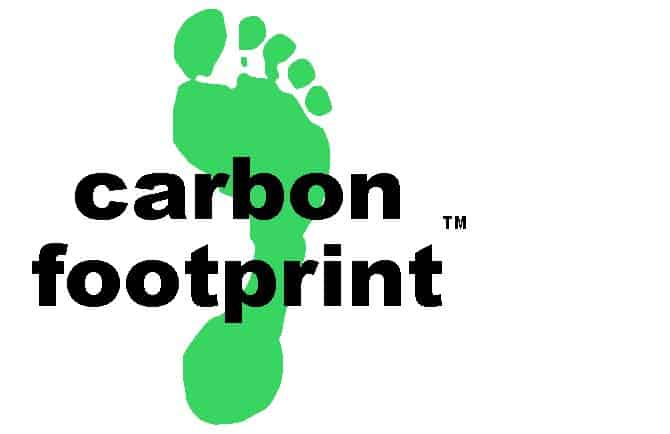 Silver Fox are now Carbon Neutral!