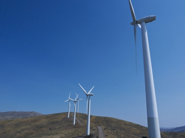Renewable Industry